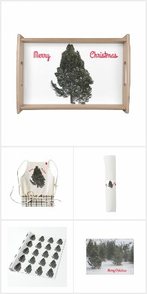 Merry Christmas Evergreen
