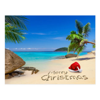 Tropical Christmas Cards Invitations Greeting Amp Photo
