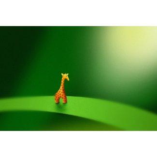 Micro Animals Giraffe Poster
