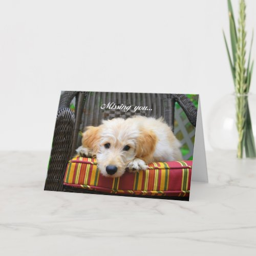 Missing You Golden Doodle Greeting Card card