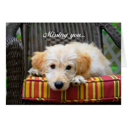 Missing You Golden Doodle Greeting Card