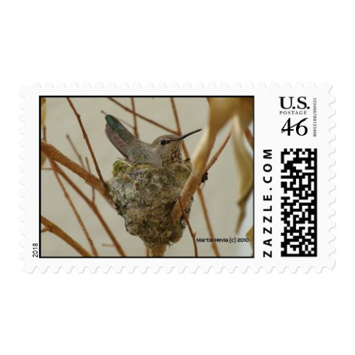 Mother Hummingbird Postage Stamp stamp