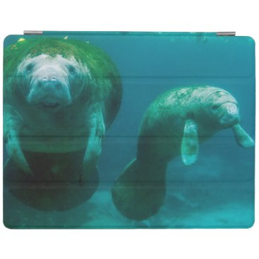 Mother manatee with her calf in Crystal River iPad Smart Cover