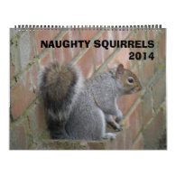 Naughty Squirrels 2014 Calendar