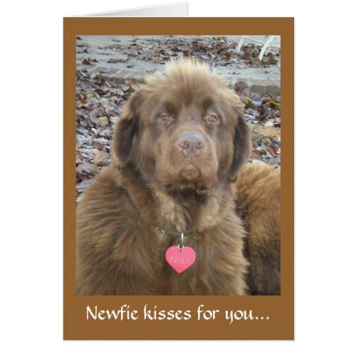 Newfie kisses for you...