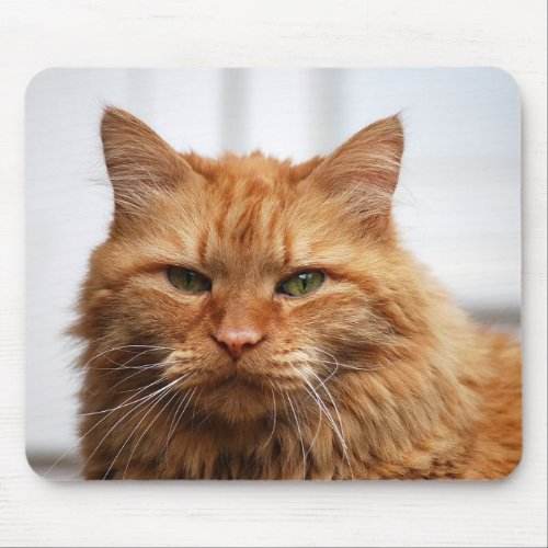 Norwegian Forest Cat Mouse Pad mousepad