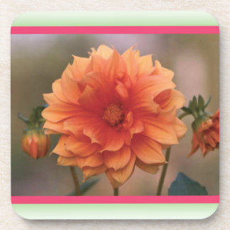 Orange Dahlia Drink Coasters