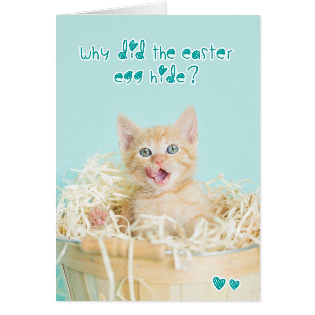 Orange Kitten Easter Joke Card