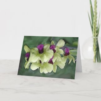 Orchid Card card