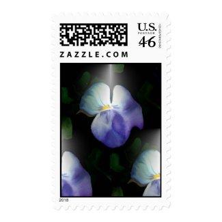 Pansies Postage stamp