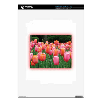 Peach and Pink Tulips iPad 2 Skin