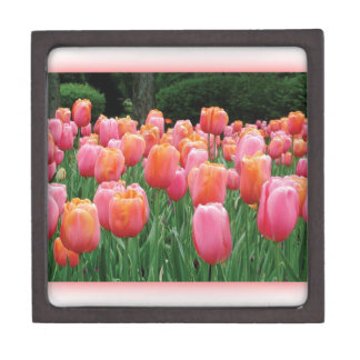Peach and Pink Tulips Premium Keepsake Box