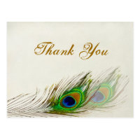 Peacock feathers Wedding Thank you Postcard