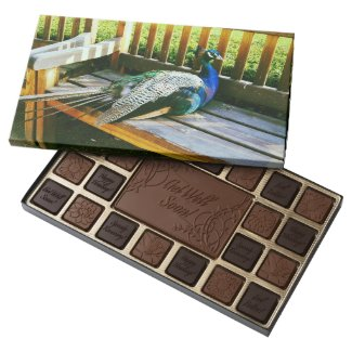 Peacock on the bench 45 piece assorted chocolate box