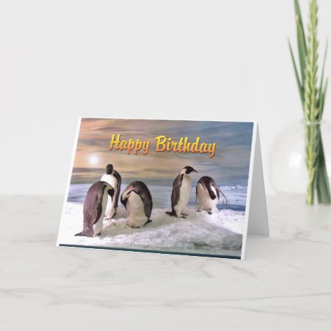 Penguin Photo Happy Birthday Card