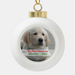 Pet's First Christmas Personalized Photo Template Ceramic Ball Christmas Ornament