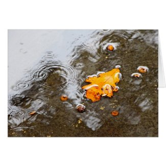 Photography-Leaf in Water
