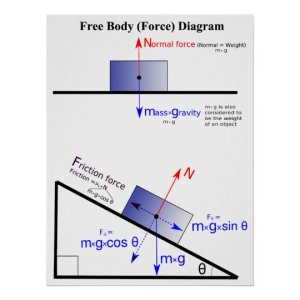 Physics Free Body Force Diagram Poster | Zazzle