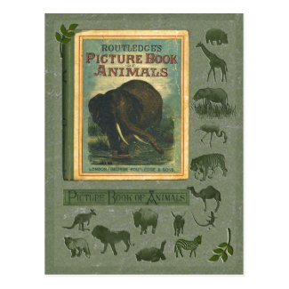Picture Book of Animals Postcard