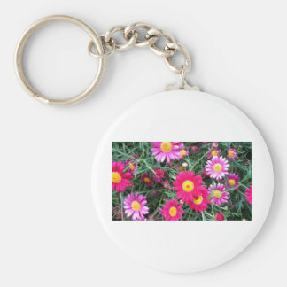 Pink Daisies Key Chain