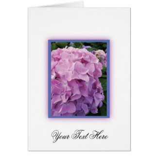 Pink Hydrangea Cards