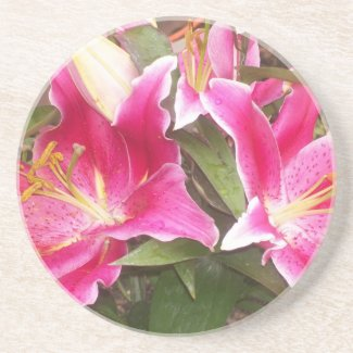Pink Lilies Coaster coaster