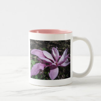 Pink Magnolia In Bloom Mug