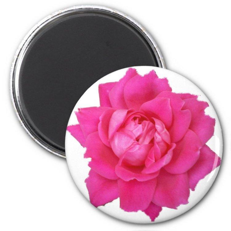 Pink Rose 2 1/4 Round Magnet