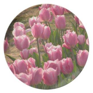 Pink Tulips Plate fuji_plate
