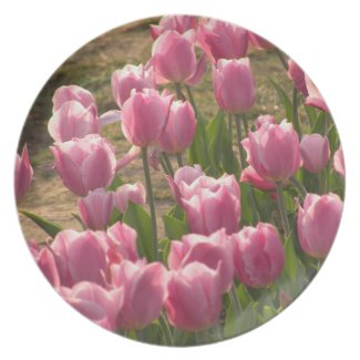 Pink Tulips Plate fuji_plate