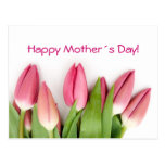 Pretty Pink Tulips Mother's Day Postcard