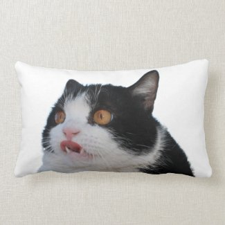 Pokey Pillow