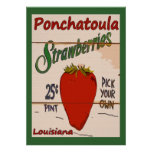 Ponchatoula Strawberries Sign