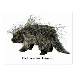 Porcupine Postcards