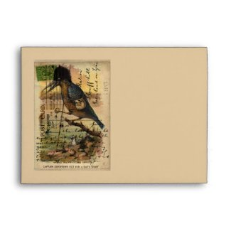 Postcard Kingfisher Envelopes