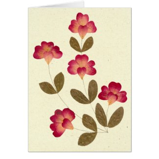 Pressed Bright Pink Tube Flowers Stationery Note Card