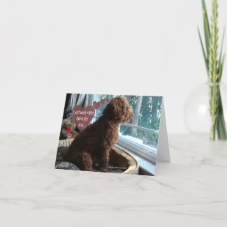 Proud Poodle - Missing You - Card card