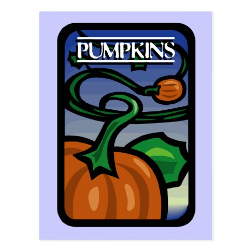 Pumpkins Postcard