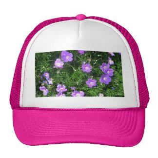 Purple Cosmos Hat