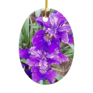 Purple Iris with Water Droplets Ornament ornament