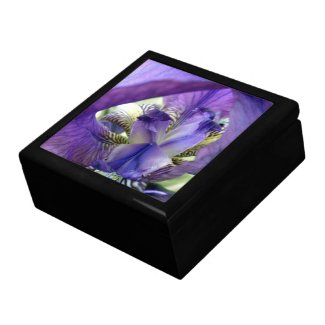 Purple Irises Iris Flower Jewelry Box Trinket Box