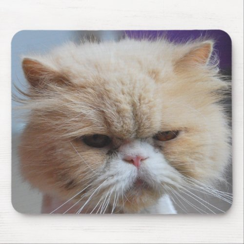 Purr-fect Persian Mousepad mousepad