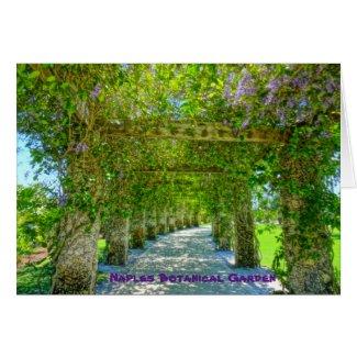 Queen's Wreath Naples Botanical Garden, Florida
