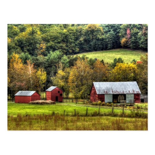 Red Barns Autumn Fall Virginia Countryside Postcard