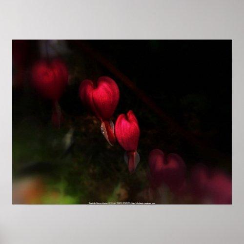 red bleeding hearts #8 dark print