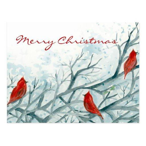 Red Cardinal Birds Winter Trees Merry Christmas Postcard