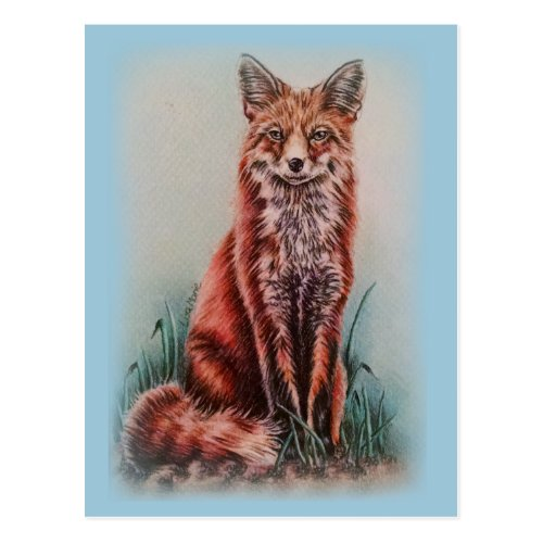 Red Fox Drawing Animal Art Pencil Sketch Postcard