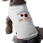 Red Ladybug Big Sister to Be Dog Shirt