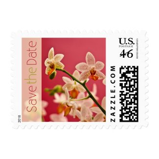 Red Orchid Save the Date Stamps