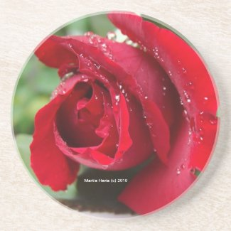 Red Rose Dew - Coaster coaster